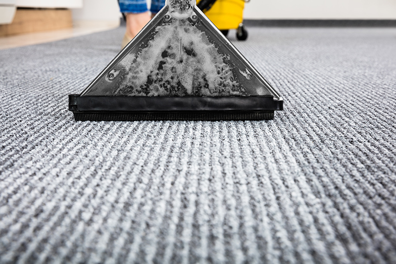 Carpet Cleaning Near Me in Brighton East Sussex